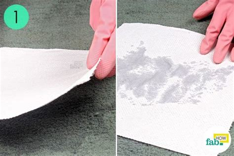 remove pet urine stains  carpet  baking soda