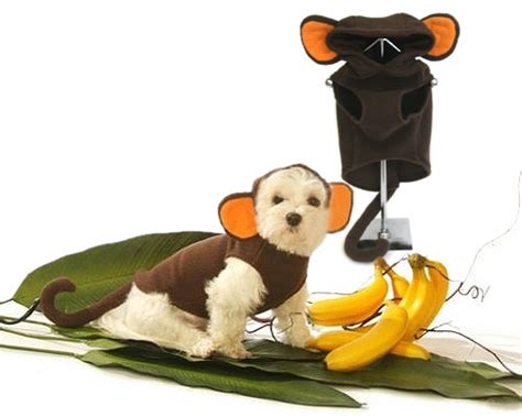 costumes for small dogs monkey small costumes monkey costume for small medium dogs