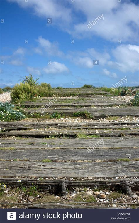 Railway Sleepers West Sussex by Wooden Railway Sleepers On The At Pagham Harbour