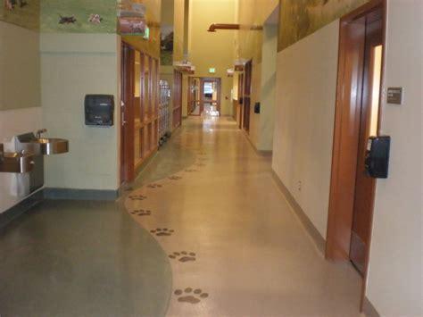 sunbelt flooring animal housing