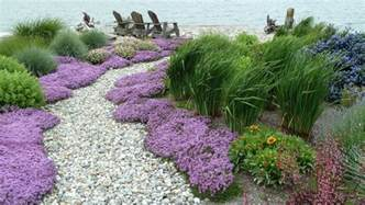 Cool blue oat grass method seattle traditional landscape inspiration