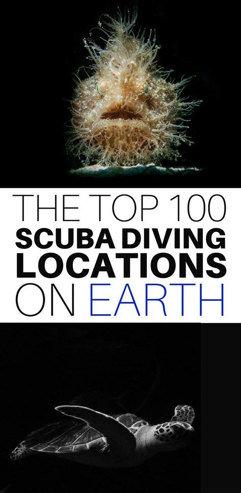 best dive locations best 25 scuba diving ideas on diving scuba