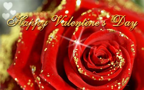 happy valentines day images 3d flower s day greeting cards designs
