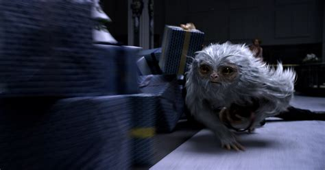 fantastic beast fantastic beasts and where to find them new images arrive
