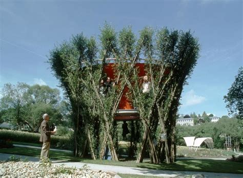 living architects grow your own buildings made from living trees