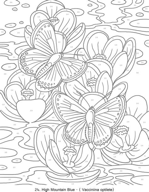 coloring pages with numbers for adults 523 best butterflies to color images on pinterest