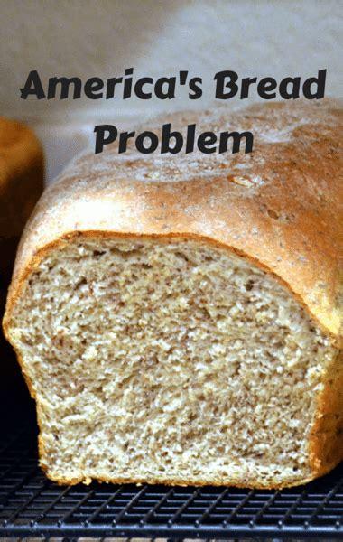 whole grains vs white bread dr oz whole wheat vs white bread sprouted grain bread