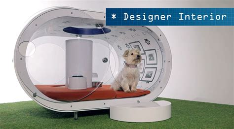 high tech dog house most expensive dream house for dogs by samsung xcitefun net