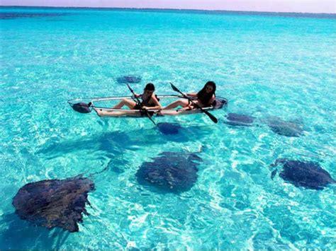 catamaran key west ecotour catamaran to key west national wildlife refuge
