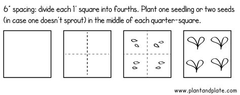 layout square meaning how and why to plant a square foot garden
