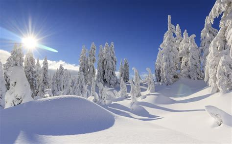 wallpaper winter snow mountains sun  nature