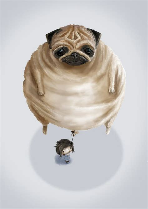 all things pug 1000 images about all things pug on pug pugs and galleries