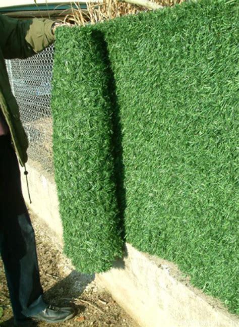 Remplacer Haie Par Cloture by Haie Artificielle Comment Bien La Choisir Jardinier Pro