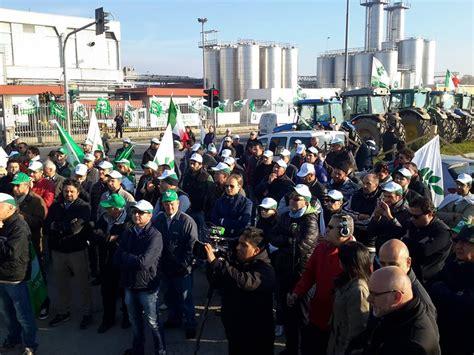 confagricoltura pavia 187 protesta degli allevatori per i prezzi latte le