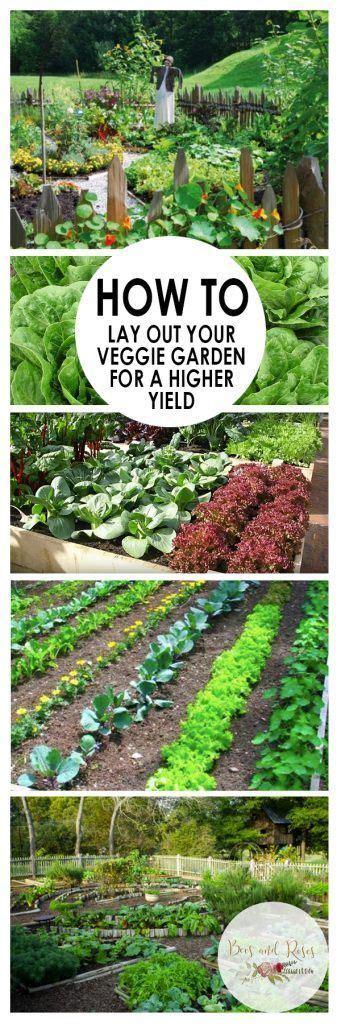 Vegetable Garden Tips And Tricks Vegetable Gardening Gardening Steps
