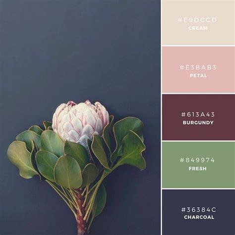 canva color palette ideas pinterest the world s catalog of ideas