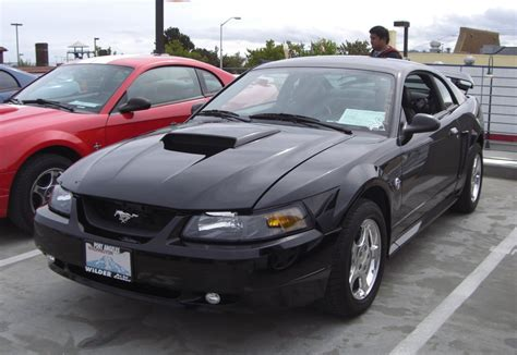 2004 ford mustang black black 2004 ford mustang coupe mustangattitude photo