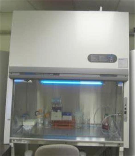 fume vs biological safety cabinet fume hoods vs biosafety cabinets