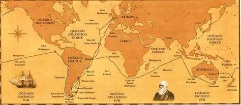 teora del viaje teor 237 a de darwin 187 blog de biolog 237 a