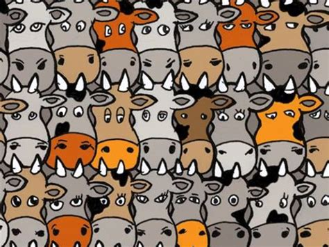 where can i buy a puppy quiz can you find the amongst this herd of cows