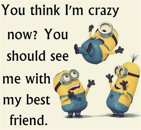 Minions Funny Memes - funny minion quotes tuesday quotesgram