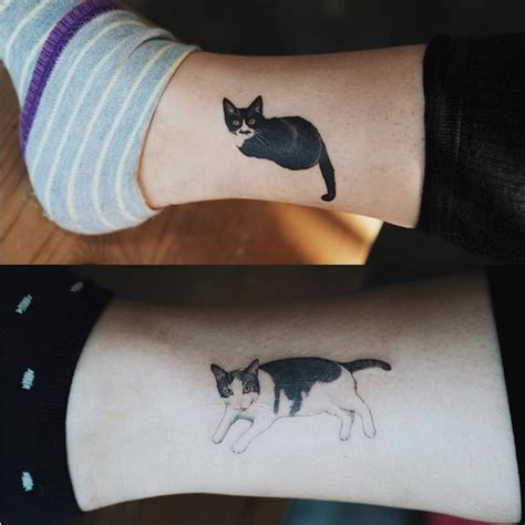 cat tattoo south korea korean cat tattoos jiji ng blog