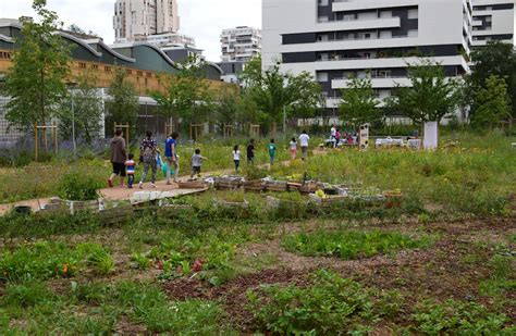 ver jardines jardin ver t 234 tu jardinons ensemble