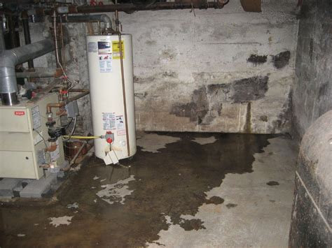 basement roofscool