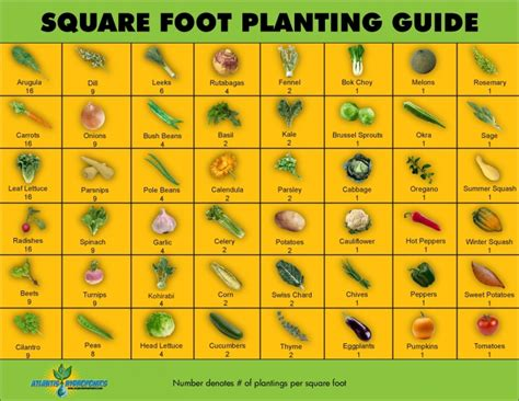 garden chart square foot planting guide vegetable garden plan per
