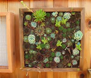 Succulent Vertical Garden Supporting Local Businesses Succulent Gardens Local Nomad