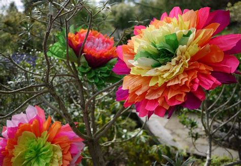 How To Make Paper Mexican Flowers - diy crepe paper flowers