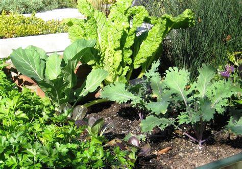 Organic Vegetable Gardening Organic Vegetable Gardening Kenosha County