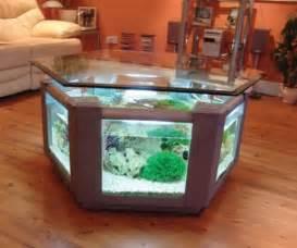 home design big fish stylish aquarium design idea small aquarium home interior