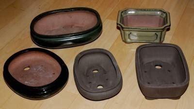 vasi da bonsai vasi per bonsai bonsai