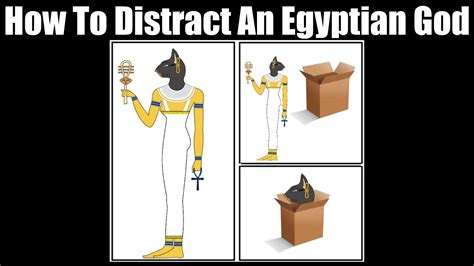 How To Meme - how to distract an egyptian cat god funny pet stop