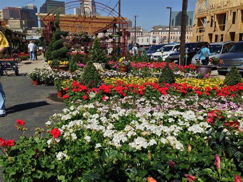 home decor company picks dallas farmers market for dallas farmers market in bloom