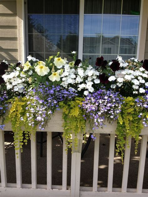 white railing planters ideas for deck railing planters containers front yard