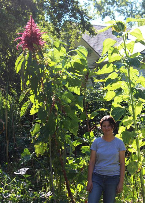 Gardening Podcast by Sg552 Experimental Gardening With Megan Phelps 6ftmama