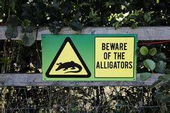 Beware The Lake beware of alligators sign with alligator in lake royalty