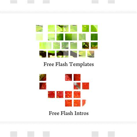 flash template 156 intro