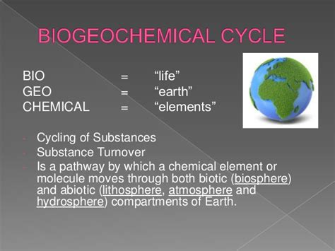 biogeochemical cycles carbon  nitrogen cycle