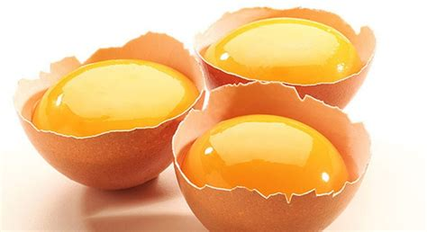 Pewarna Makanan Kuning Telur Nyliem 15 manfaat dan khasiat kuning telur untuk kesehatan khasiat