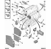 CAMSHAFT POSITION SENSOR FOR CITROEN C3 C4 DS3 16 06&gt  EBay