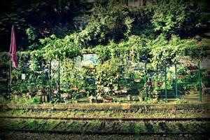 les jardins du ruisseau jardinons ensemble