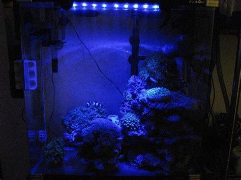 aquarium lunar led lights lunar light aquarium light