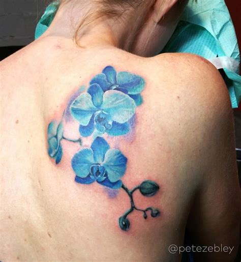 small orchid tattoos best 25 blue orchid ideas on colorful