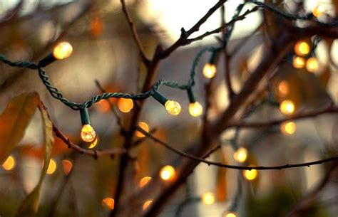 extreme examples  bokeh photography templates perfect