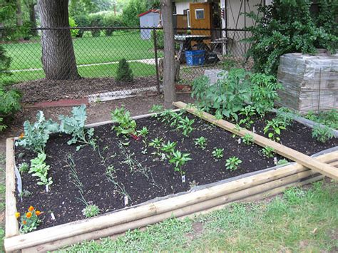 Backyard Veggie Garden by Backyard Vegetable Garden