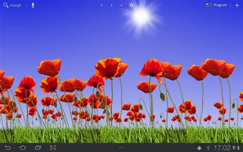 Poppy Field Free   Android Apps on Google Play