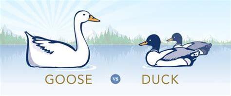 Duck Vs Goose Duvet by Hungarian Goose Vs Duck